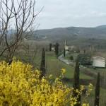 Wiosna w Toskanii – PRIMAVERA in TOSCANA