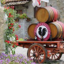 Opowiem Ci o Chianti, krainie wina i oliwy.