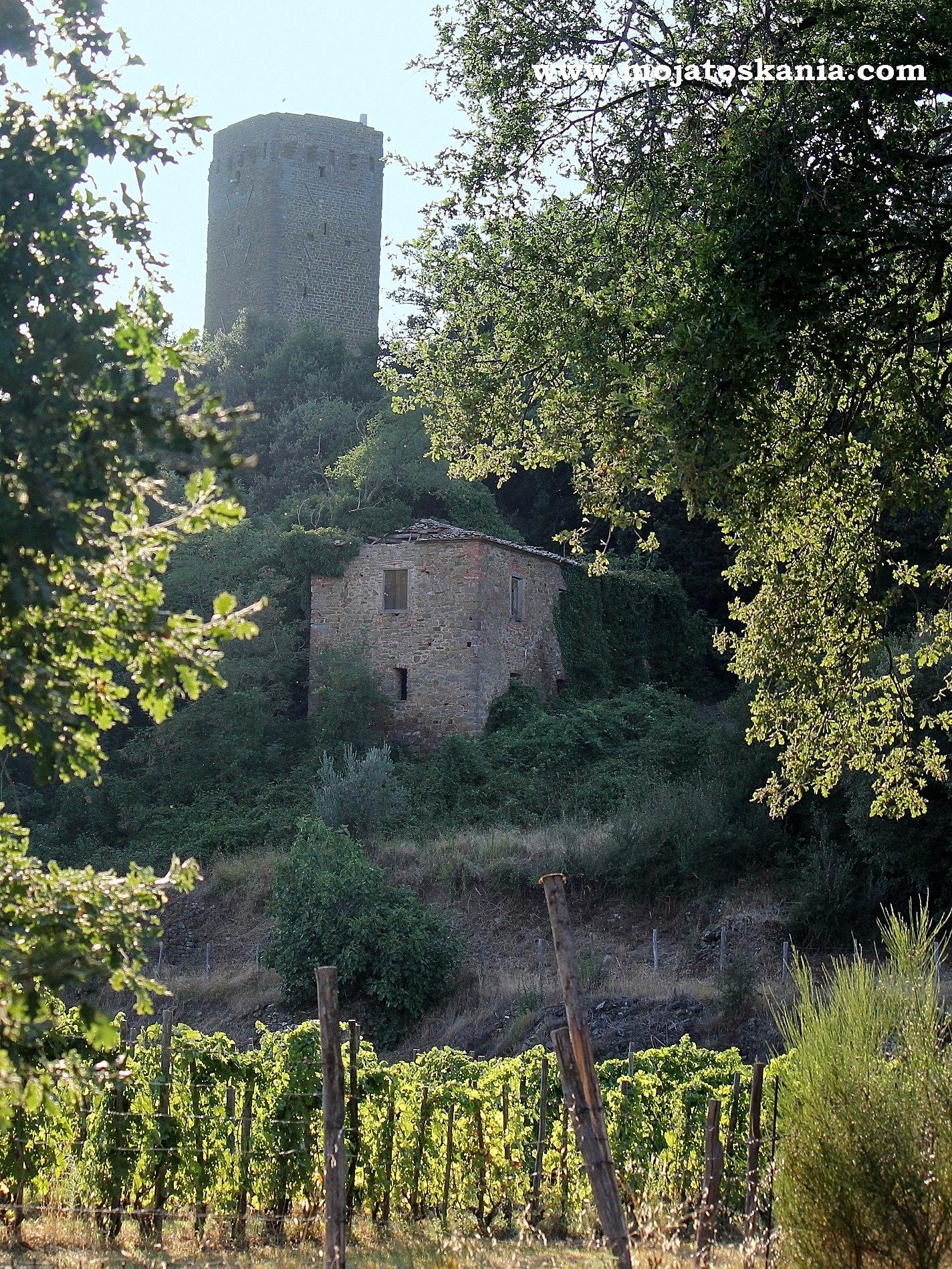 Widok na wieżę Galatrona z pobliskiej winnicy