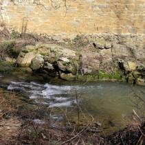Ambra, gdzie strumyk płynie z wolna