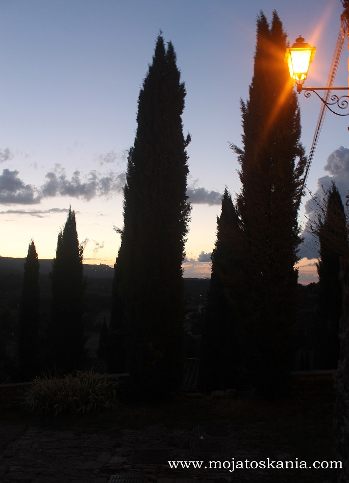 Castello Capannole cyprysy 13x18