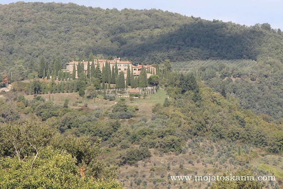 12 Chianti casolare alberi di olivi