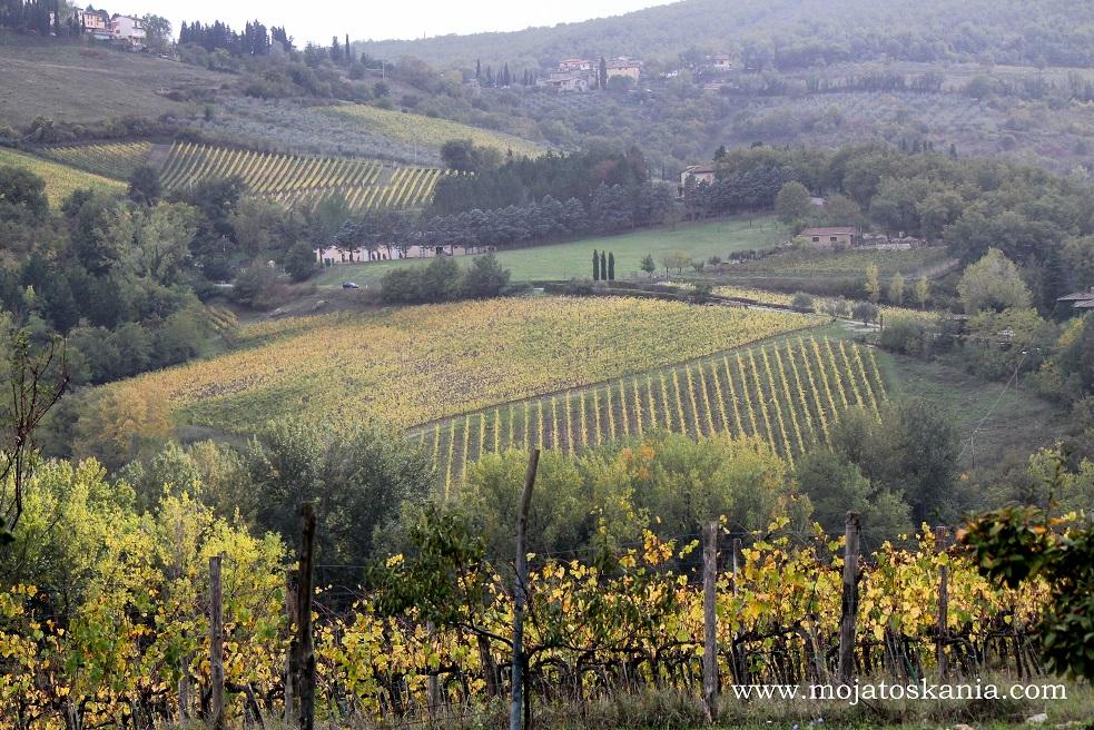 2 otoczenie Castellina in Chianti