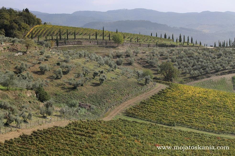7 droga do Castellina in Chianti
