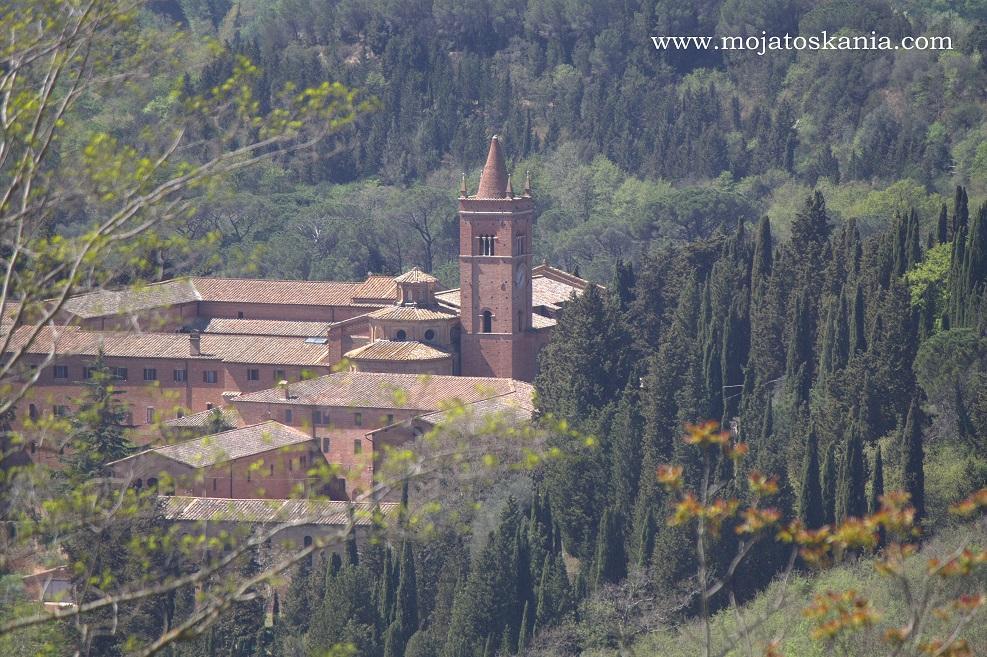 Monte Oliveto wiosna