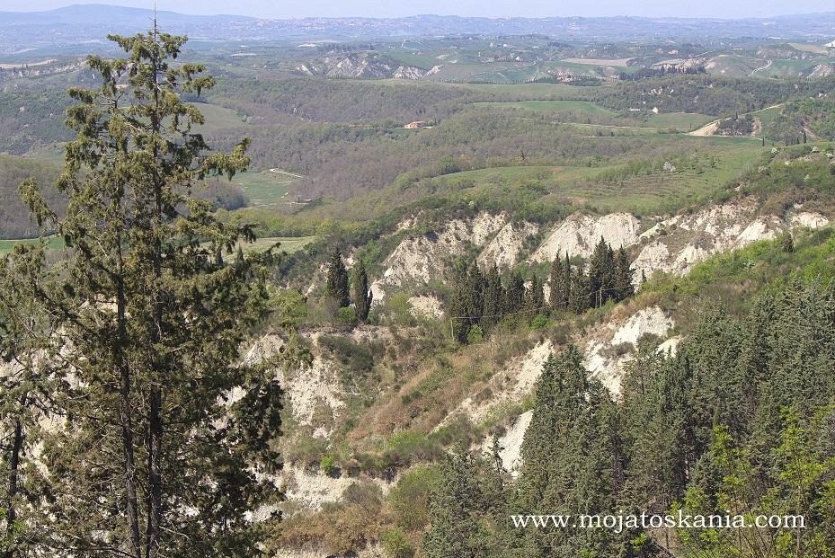 Monte oliveto okolica pierwsze zielonosci