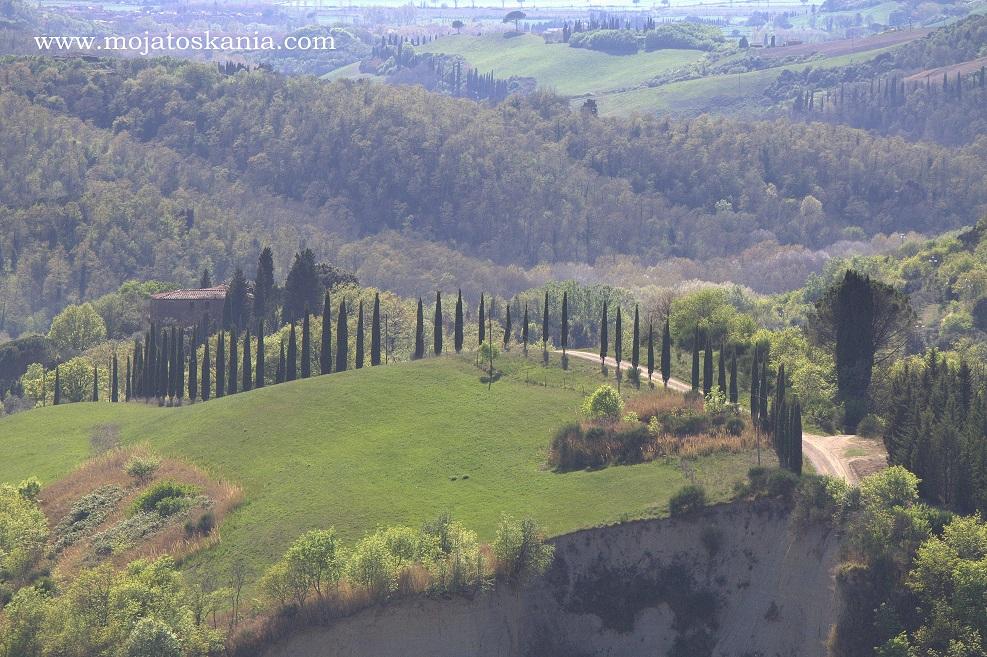 Monte oliveto okolica widok z Chiusure 1