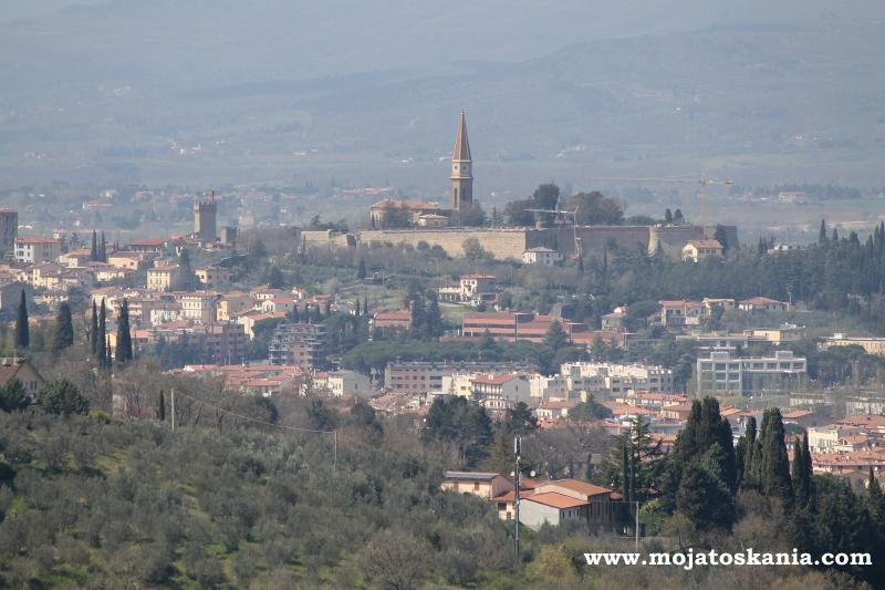 Otoczone oliwkami Arezzo.jpg