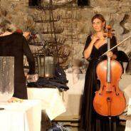 Cennina muzyczna, koncertowa, fotograficzna